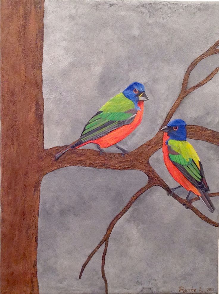 Renee Laferriere's 'Painted Buntings' are just too cute.