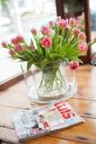 #Tulips and Tuis magazine www.kikka.co.za