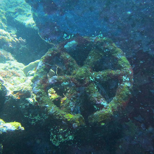 Spot Diving di Bali 1. USAT Liberty – Mungkin ini merupakan situs diving paling populer di Bali. Walaupun begitu, bagi Teman Pejalan yang baru pertama akan menyelam di Bali, situs ini akan sayang jika dilewatkan.