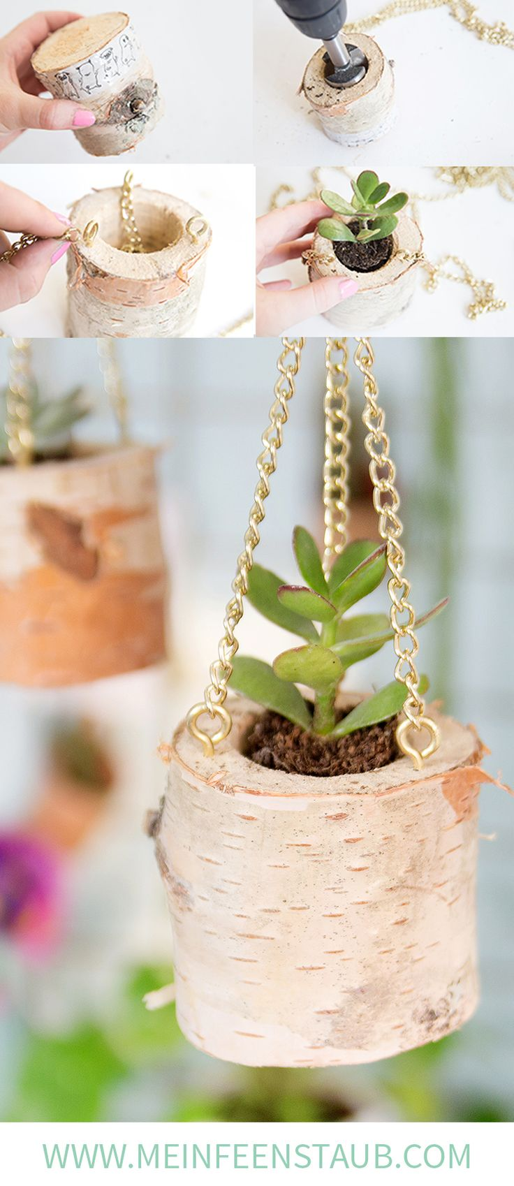 Die besten 25+ Hängende sukkulenten Ideen auf Pinterest   saftiger ...