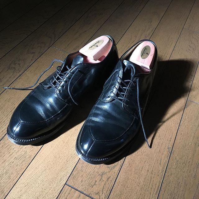 hidenaotakagi #alden #aldenshoes #aldenarmy #オールデン #新宿 #靴磨き #新宿靴磨き #shoecare #shoeshine #shoeshiner #shoestagram #shoeslover #mensshoes #mensstyle #mensfashion #メンズファッション #メンズ #ファッション #紳士靴 #靴 #革靴 #saphir #サフィール #足元くら部 #足元倶楽部 #東京 #理容室 #バーバー#tokyo #nofilter 2017/02/10 17:34:14