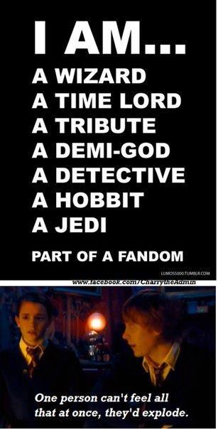 Part of each fandom, actually.
