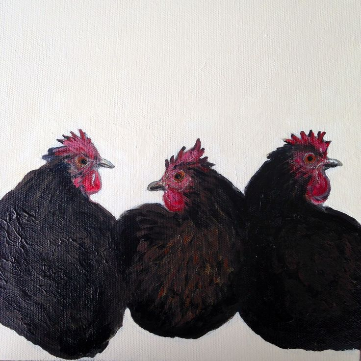 Three black chooks, Acrylic on canvas 2014. Ingrid Bowen Art