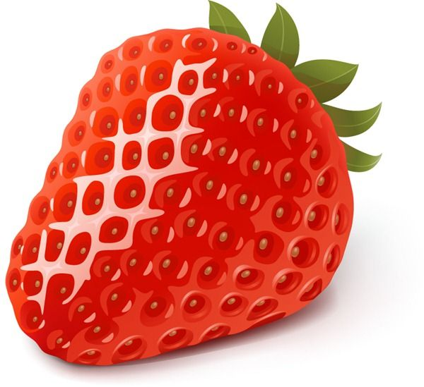 Delicious fresh strawberry vector graphics
