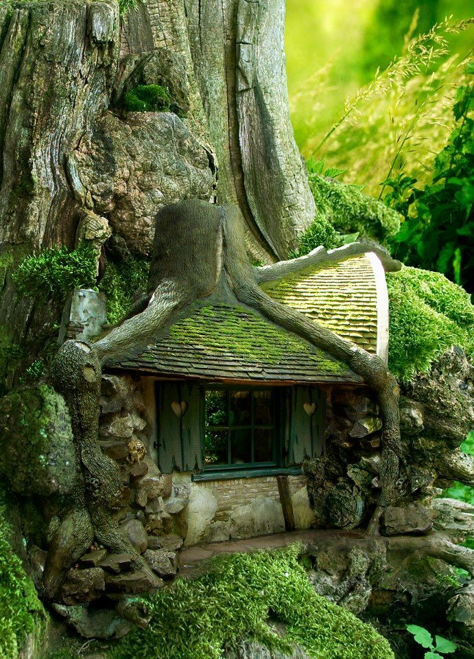 A cross between Hagrid's Hut, Bilbo's House, and a fairy house!