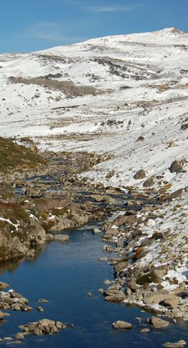 The Snowy is one of the largest snowmelt rivers in Australia. It flows from the Snowy Mountains in New South Wales to the sea at Marlo in Victoria. The NSW Office of Water is responsible for the regulation of water release arrangements for the Snowy River from the Snowy Mountains Scheme.