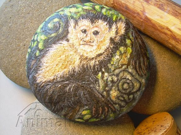 Gli animali guida dell'oroscopo Maya - Animalia Daniela Galli - Picasa Web Albums
