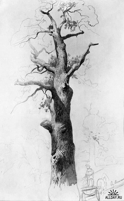 The Trunk of an Old Oak - Fyodor Vasilyev