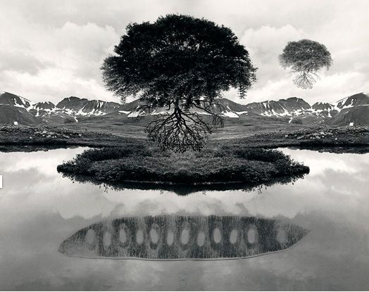 Title: Untitled  Date: 1969 Photographer: Jerry Uelsmann  In this photo there is a tree on an island that looks to be floating over water. The tree is a large tree with lots of leaves and roots. It reminds me of the tree of life. This photo is about the tree of life and the supernatural that holds this tree and island above the water.