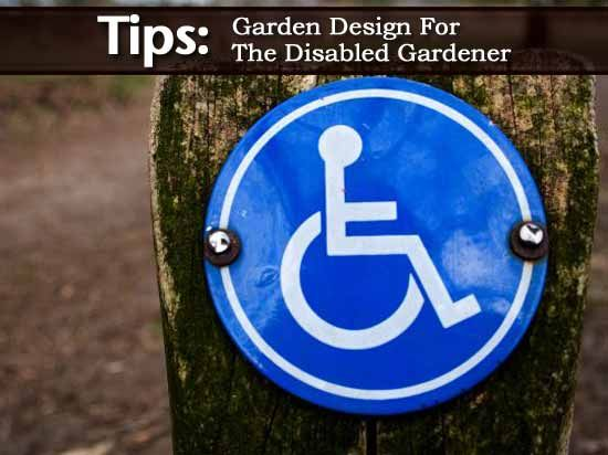 16 best images about disabled gardening on pinterest for Garden design ideas for disabled