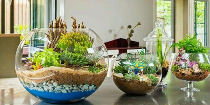 Bitkisel yağlar,tedavi,guzellik, çaylar, şifalı bitkiler, zayıflama, yöntemleri, bitkisel yağlar, Saç, cilt ve vücut bakımı,yemek tarifleri,güncel ve aktüel,kadın, hayata  dair herşey