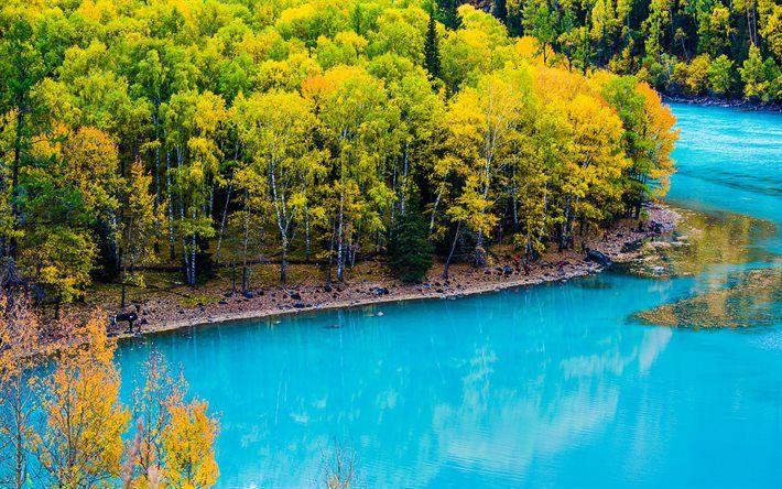 Lataa kuva Kanas Lake, sininen vesi, Aasiassa, Xinjiang, Kiina