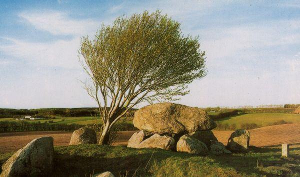 dolmen chez Stenvad en Jutlande (Jylland) / Großsteingrab bei Stenvad in Jylland / hunebed bij Stenvad in Jutland / el dolmén cerca de Stenvad en Jylland / jættestue ved Stenvad i Jylland