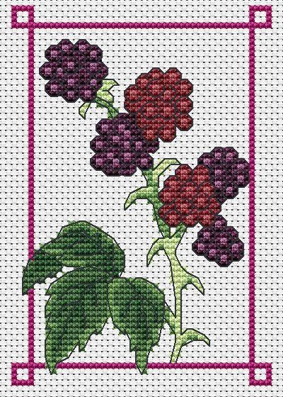 free September blackberry chart | Amanda Gregory cross-stitch design