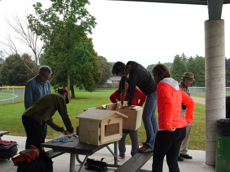 In Kitchener, Ontario, and in nearby Waterloo and Cambridge, residents have built and installed hundreds of Little Free Libraries in front yards, adding to the thousands that already in exist around the world.
