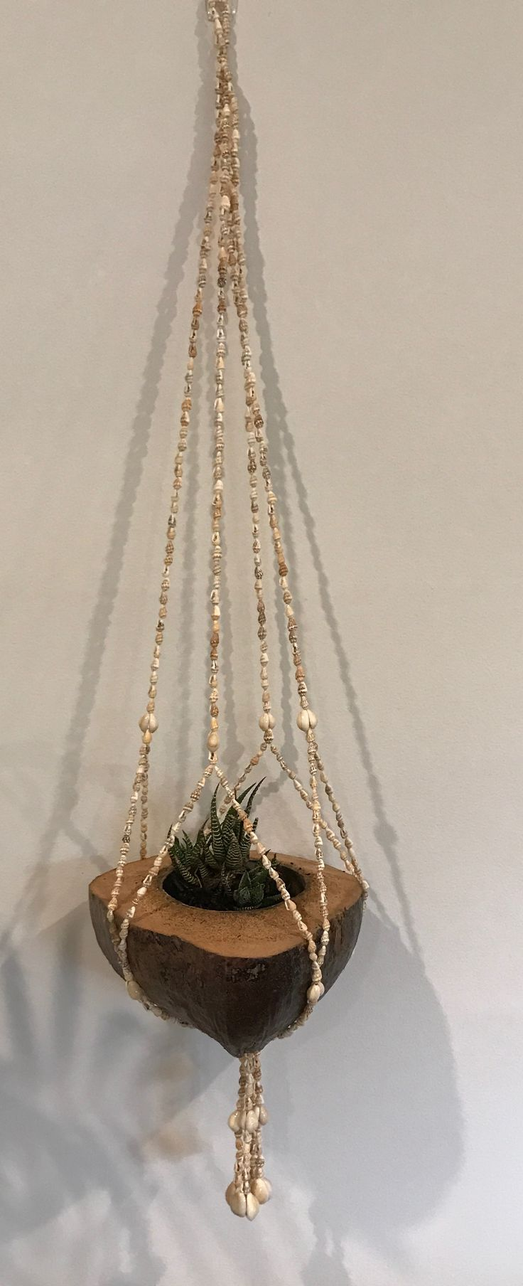 Seashell pot plant hanger
