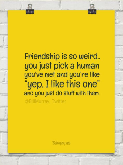 """Friendship is so weird.. you just pick a human you've met and you're like  """"yep, i like this ... by @BiIIMurray, Twitter #51090"""