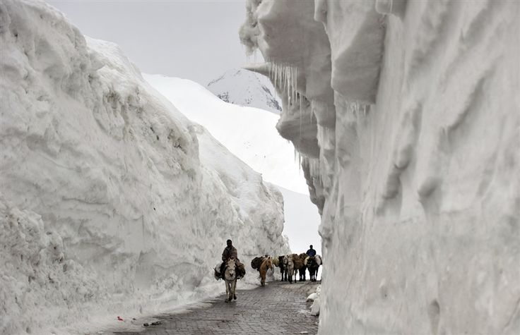 Traffic snakes along reopened mountain pass in Kashmir