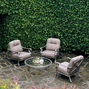 Cute ivy vine for back wall Camden Square traditional patio other