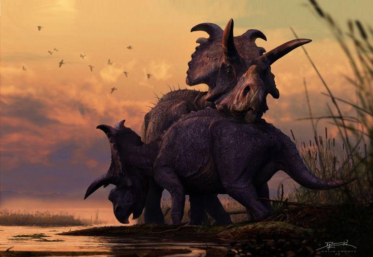 David Krentz #Albertaceratops