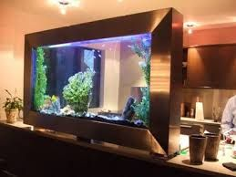 house aquariums - Google Search