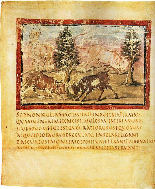The Vergilius Vaticanus, Capitalis Rustica