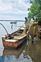 La pesca artesanal en las zonas costeras también se ve afectada por el ascenso del nivel del mar.