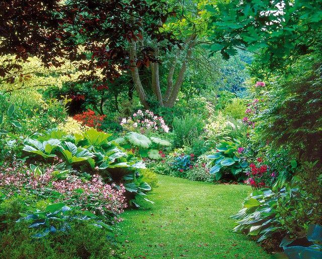 Créer un jardin en terre humide : le bon choix de végétaux.