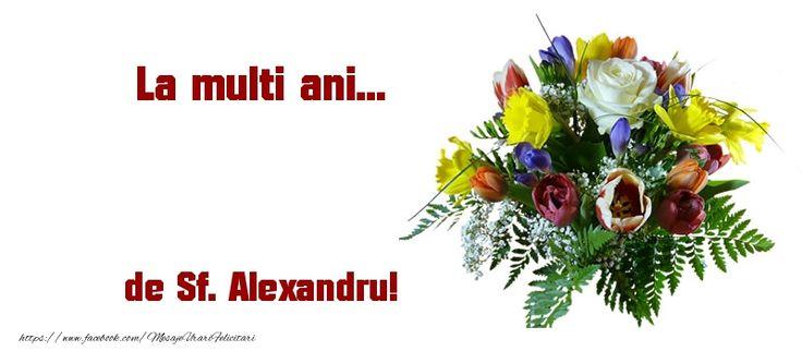 La multi ani... de Sf. Alexandru!