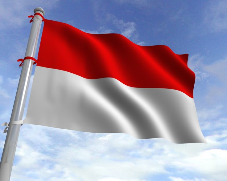 indonesia national flg Red means courage and freedom of man. White means purity. Or the human spirit.