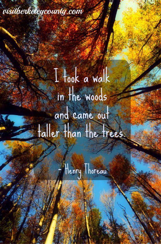... Pinterest   Henry David Thoreau, Citas Célebres y Ralph Waldo Emerson