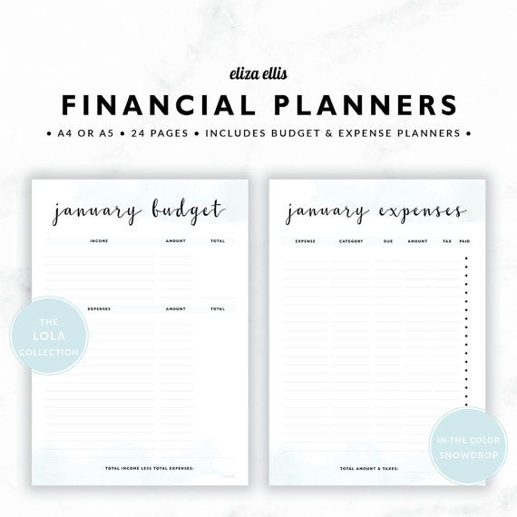 FINANCIAL PLANNERS / Budget Planner / 2017 Planner / Expense Tracker / Budget / Finance Planner / The Lola Planners in Snowdrop / 419