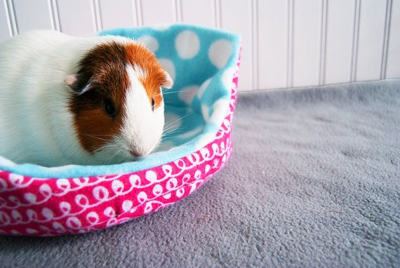how to make a guinea pig bed
