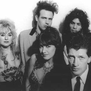 Bild für 'Herman Brood & His Wild Romance'