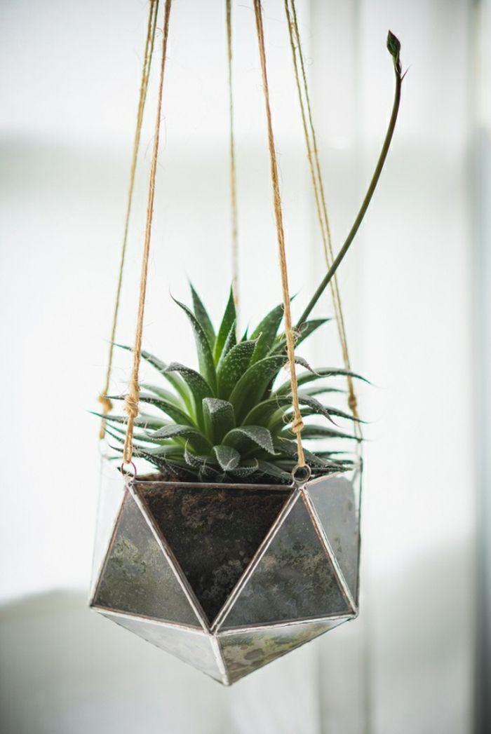 17 meilleures id es propos de terrarium suspendu sur - Pot suspendu pour plantes ...