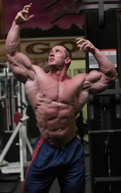 Dr. Wannabe - Armin Scholz | massive men of muscle ...