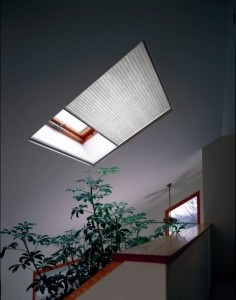 Skylight shades:  I would like the motorized version, but received a $5k quote for one skylight.  Opted for manual at around $400.00.  Either way, skylights are well worth it.