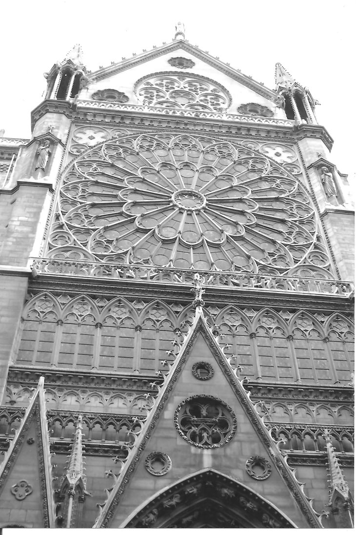 The Notre Dame, gray-scaled, in Paris, France