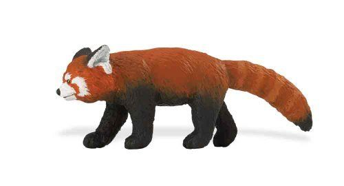 """Wild Safari Wildlife: Red Panda by Safari Ltd. $6.44. 4.25"""" L x 1.5"""" H (11 x 4 cm). Each replica comes with 5-language educational hangtag.. All Safari Ltd. products are hand-painted, phthalate-free and thoroughly safety tested to safe guard your childs health.. Red Pandas live in India, China, and the Himalayas. Although they might not look very similar to their distant relations, Giant Pandas, both species eat a steady diet of bamboo. In fact, a female Red Panda can ea..."""