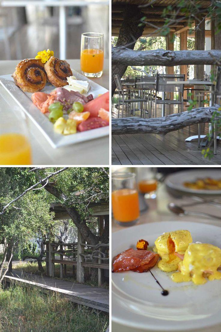 Breakfast at Kapama Karula luxury safari lodge, South Africa | heneedsfood.com