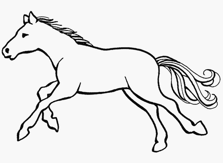 ausmalbilder pferde kostenlos ausdrucken
