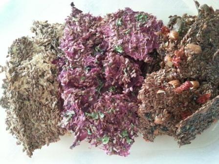 Zdravá syrová raw strava - recepty, tipy a návody |