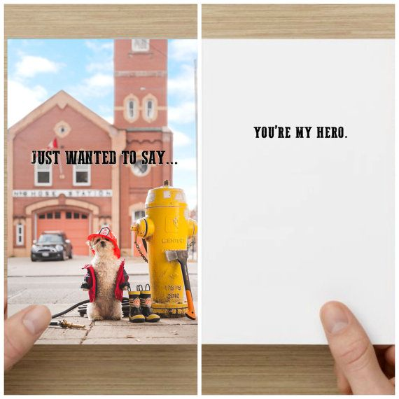 "The Frumpy Dog Thank You Card: ""I just wanted to say...You're my hero"""
