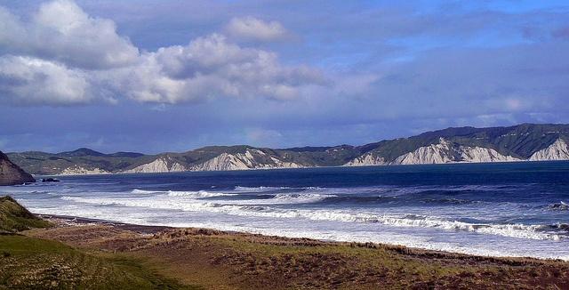 Mahia Beach in New Zealand. Photo courtesy of Dr. Kathryn Starkey and Molly…