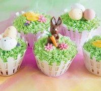 Deze prachtig gedecoreerde cupcakes zijn perfect voor de lente. Maar staan ook schitterend op een prachtig gedekte Paastafel. De cupcakes maak je gemakkelijk en snel met de FunCakes mix voor cupcakes. Na het bakken maak je een schitterende grasveldje met royal icing gekleurd met groene icing color.