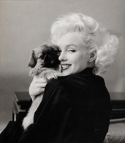 Milton Greene - Album photos - LeS pLuS BeLLeS PhOtOs De MaRiLyN MoNrOe