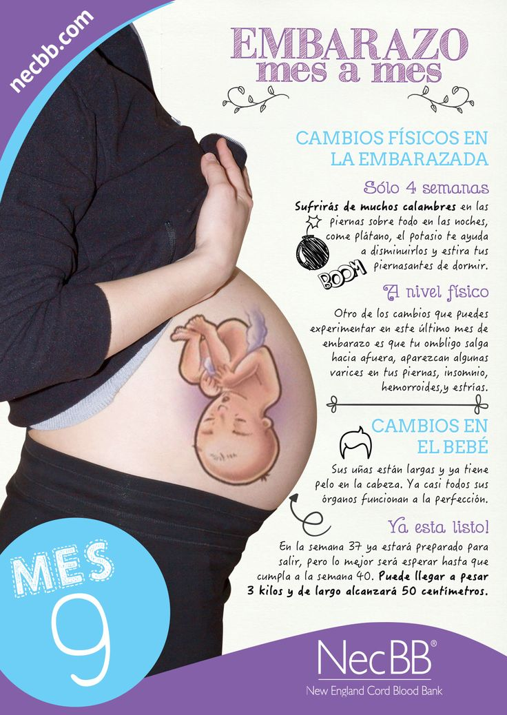 """infografía para pinterest NecBB """"El embarazo mes a mes"""" (Mes 9)"""