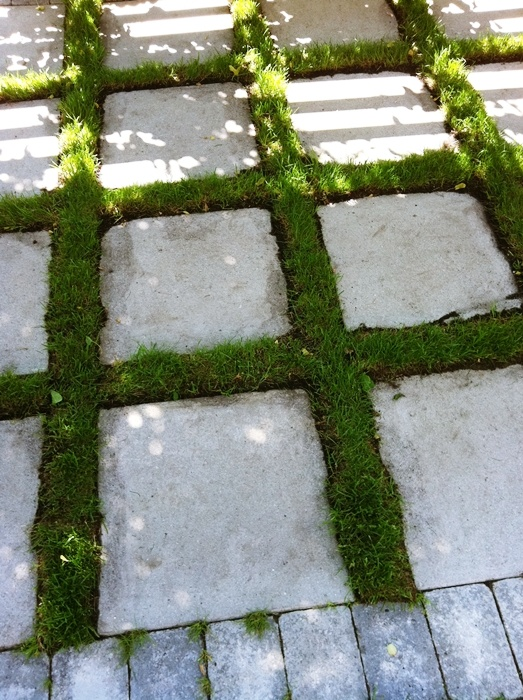 Älskar stenläggningen med växter emellan! Stil Inredning & Design: trädgård inpiration