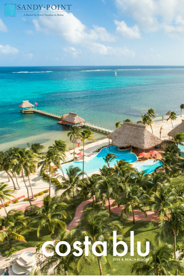 50 best pool time images on pinterest ambergris caye belize and san pedro town - Ambergris dive resort ...