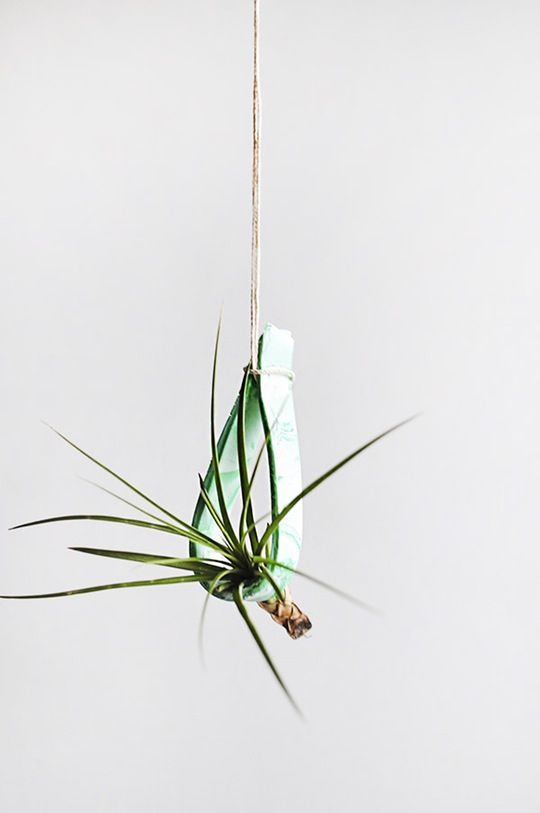 DIY Hanging Clay Plant Holder — Apartment Therapy Reader Submission Tutorials